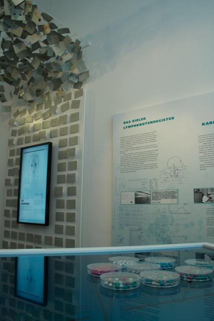 Temporäre Ausstellung Lymphomforschung (1)