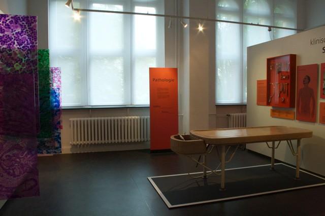 Dauerausstellung Pathologie (2)
